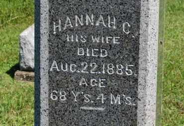 HACHENBARG, HANNAH C. - Medina County, Ohio | HANNAH C. HACHENBARG - Ohio Gravestone Photos