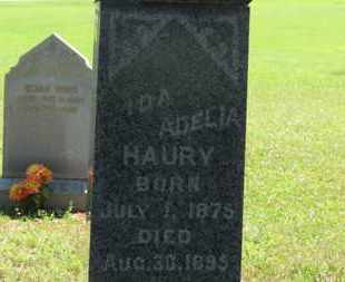 HAURY, IDA EDELIA - Medina County, Ohio | IDA EDELIA HAURY - Ohio Gravestone Photos
