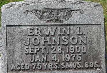 JOHNSON, ERWIN L. - Medina County, Ohio | ERWIN L. JOHNSON - Ohio Gravestone Photos