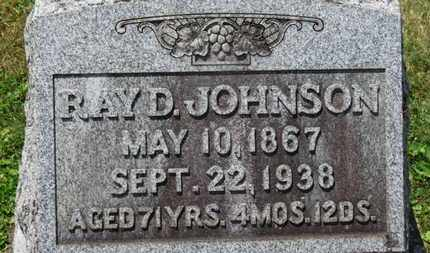 JOHNSON, RAY D. - Medina County, Ohio | RAY D. JOHNSON - Ohio Gravestone Photos