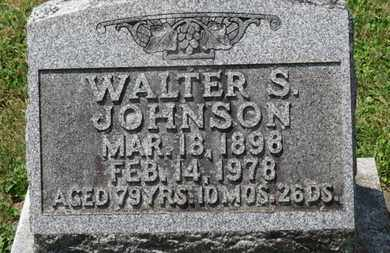 JOHNSON, WALTER S. - Medina County, Ohio | WALTER S. JOHNSON - Ohio Gravestone Photos