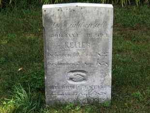 KELLER, FRIEDRICH H. - Medina County, Ohio | FRIEDRICH H. KELLER - Ohio Gravestone Photos
