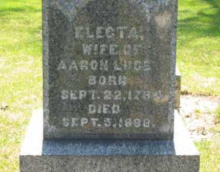 LUCE, ELECTA - Medina County, Ohio | ELECTA LUCE - Ohio Gravestone Photos