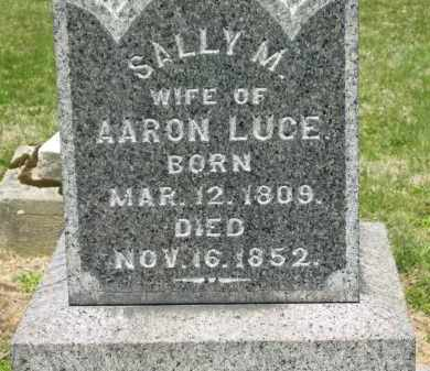 LUCE, AARON - Medina County, Ohio | AARON LUCE - Ohio Gravestone Photos