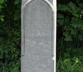 MOHLE, JOHN G. - Medina County, Ohio | JOHN G. MOHLE - Ohio Gravestone Photos