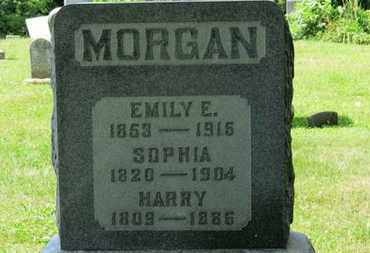 MORGAN, HARRY - Medina County, Ohio | HARRY MORGAN - Ohio Gravestone Photos
