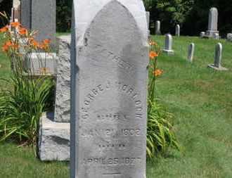 MORLOCK, GEORGE J. - Medina County, Ohio | GEORGE J. MORLOCK - Ohio Gravestone Photos