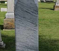 AUSTIN PALMER, ORRA H. - Medina County, Ohio | ORRA H. AUSTIN PALMER - Ohio Gravestone Photos