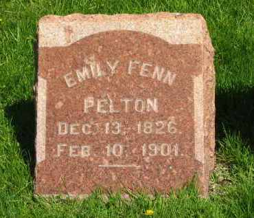 PELTON, EMILY - Medina County, Ohio | EMILY PELTON - Ohio Gravestone Photos