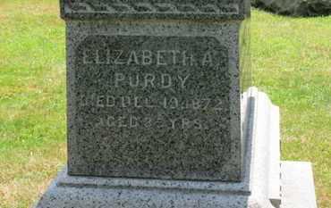 PURDY, ELIZABETH A. - Medina County, Ohio | ELIZABETH A. PURDY - Ohio Gravestone Photos