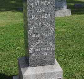 RICHARDS, JAMES - Medina County, Ohio | JAMES RICHARDS - Ohio Gravestone Photos