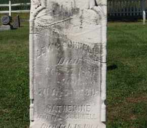 SCHNELL, CATHERINE - Medina County, Ohio | CATHERINE SCHNELL - Ohio Gravestone Photos
