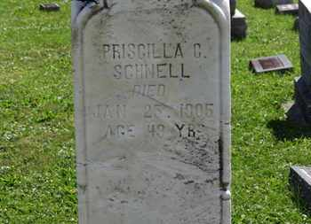 SCHNELL, PRISCILLA - Medina County, Ohio | PRISCILLA SCHNELL - Ohio Gravestone Photos