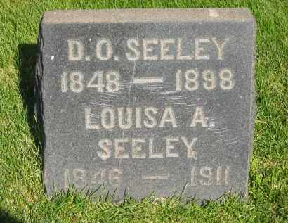 SEELEY, LOUISA A. - Medina County, Ohio | LOUISA A. SEELEY - Ohio Gravestone Photos