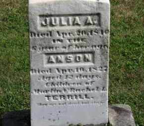 TERRILL, ANSON - Medina County, Ohio | ANSON TERRILL - Ohio Gravestone Photos