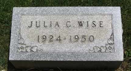 WISE, JULIA G. - Medina County, Ohio | JULIA G. WISE - Ohio Gravestone Photos