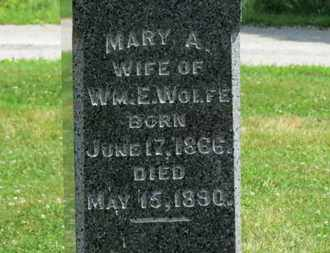 WOLFE, WM. E. - Medina County, Ohio | WM. E. WOLFE - Ohio Gravestone Photos