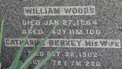 WOODS, WILLIAM - Medina County, Ohio | WILLIAM WOODS - Ohio Gravestone Photos