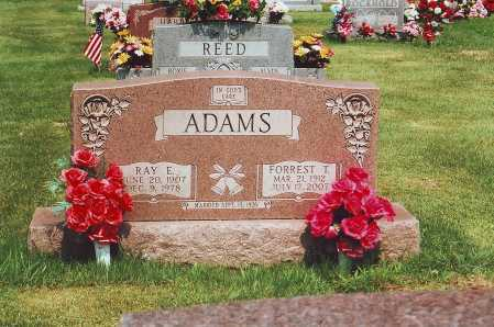 ADAMS, RAY E. - Meigs County, Ohio | RAY E. ADAMS - Ohio Gravestone Photos
