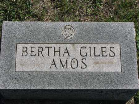 AMOS, BERTHA - Meigs County, Ohio | BERTHA AMOS - Ohio Gravestone Photos