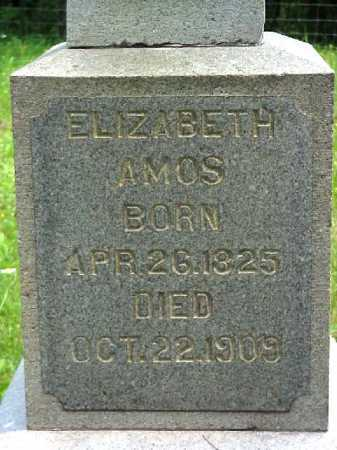 LONGSTRETH AMOS, ELIZABETH - Meigs County, Ohio | ELIZABETH LONGSTRETH AMOS - Ohio Gravestone Photos