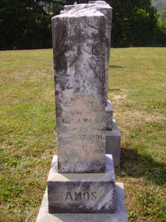 AMOS, MARY J. - Meigs County, Ohio | MARY J. AMOS - Ohio Gravestone Photos