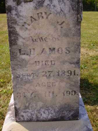 HARMAN AMOS, MARY J. - Meigs County, Ohio | MARY J. HARMAN AMOS - Ohio Gravestone Photos