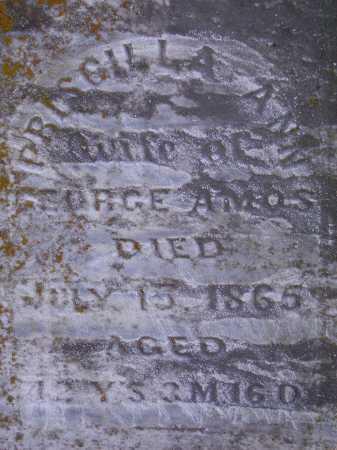 AMOS, PRISCILLA ANN - Meigs County, Ohio | PRISCILLA ANN AMOS - Ohio Gravestone Photos