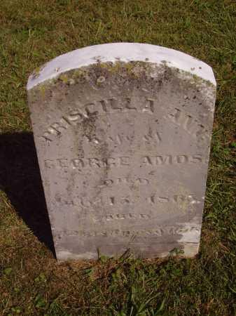 AMOS, PRISCILLA ANN - Meigs County, Ohio   PRISCILLA ANN AMOS - Ohio Gravestone Photos