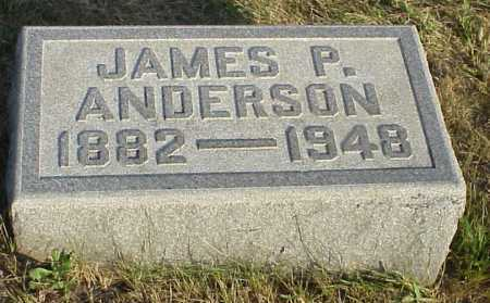 ANDERSON, JAMES P. - Meigs County, Ohio | JAMES P. ANDERSON - Ohio Gravestone Photos