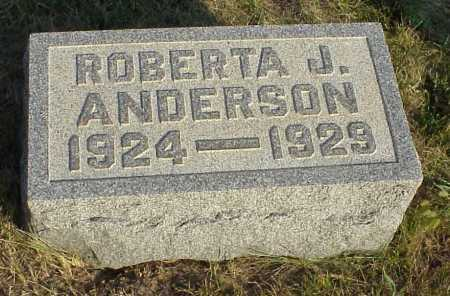 ANDERSON, ROBERTA J. - Meigs County, Ohio | ROBERTA J. ANDERSON - Ohio Gravestone Photos