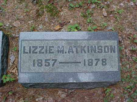 ATKINSON, LIZZIE M. - Meigs County, Ohio | LIZZIE M. ATKINSON - Ohio Gravestone Photos