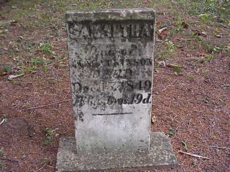 ATKINSON, SAMANTHA - Meigs County, Ohio | SAMANTHA ATKINSON - Ohio Gravestone Photos
