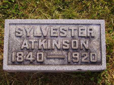 ATKINSON, SYLVESTER - Meigs County, Ohio | SYLVESTER ATKINSON - Ohio Gravestone Photos