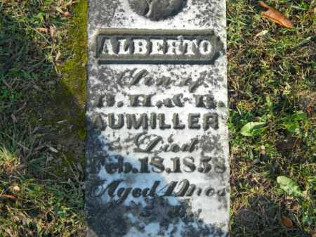 AUMILLER, ALBERTO - Meigs County, Ohio | ALBERTO AUMILLER - Ohio Gravestone Photos