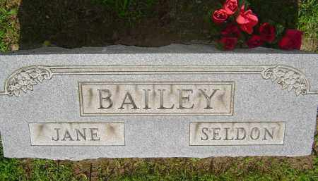 JENKINSON BAILEY, JANE ELIZABETH - Meigs County, Ohio | JANE ELIZABETH JENKINSON BAILEY - Ohio Gravestone Photos