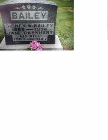 BAILEY, JANE - Meigs County, Ohio | JANE BAILEY - Ohio Gravestone Photos
