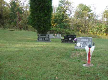 BARLEY, OVERVIEW - Meigs County, Ohio | OVERVIEW BARLEY - Ohio Gravestone Photos