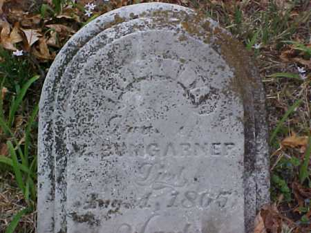 BAUMGARNER, LUCINDA - Meigs County, Ohio | LUCINDA BAUMGARNER - Ohio Gravestone Photos