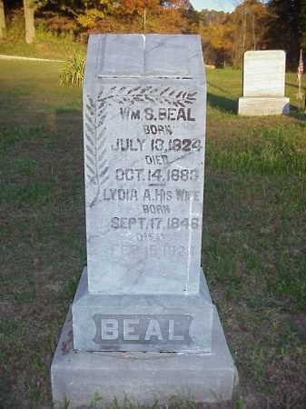 HULL BEAL, LYDIA A. - Meigs County, Ohio | LYDIA A. HULL BEAL - Ohio Gravestone Photos