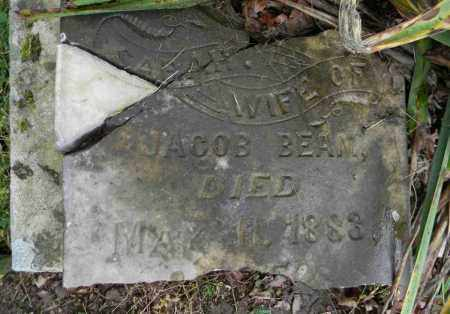 BEAM, SARAH - Meigs County, Ohio | SARAH BEAM - Ohio Gravestone Photos