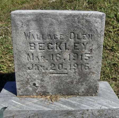 BECKLEY, WALLACE OLEN - Meigs County, Ohio | WALLACE OLEN BECKLEY - Ohio Gravestone Photos