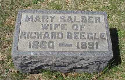 BEEGLE, MARY SALSER - Meigs County, Ohio | MARY SALSER BEEGLE - Ohio Gravestone Photos