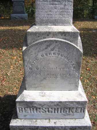 BERGSCHICKER, KATIE - Meigs County, Ohio | KATIE BERGSCHICKER - Ohio Gravestone Photos