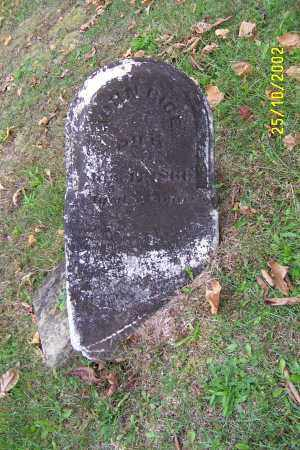 BICE, JOHN - Meigs County, Ohio | JOHN BICE - Ohio Gravestone Photos