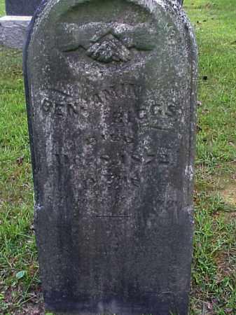 BIGGS, BENJAMIN - Meigs County, Ohio | BENJAMIN BIGGS - Ohio Gravestone Photos