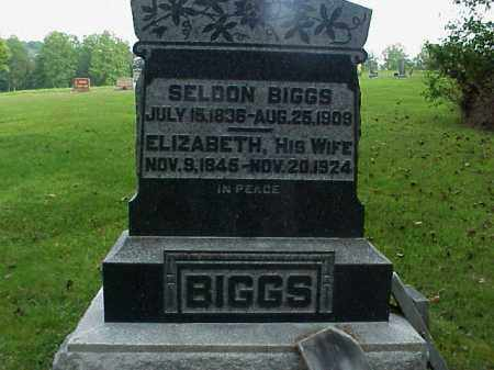 BIGGS, SELDON - Meigs County, Ohio | SELDON BIGGS - Ohio Gravestone Photos