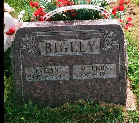 BIGLEY, EVELYN - Meigs County, Ohio | EVELYN BIGLEY - Ohio Gravestone Photos