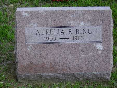 BING, AURELIA E. - Meigs County, Ohio | AURELIA E. BING - Ohio Gravestone Photos