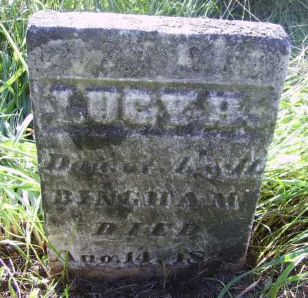 BINGHAM, LUCY - Meigs County, Ohio | LUCY BINGHAM - Ohio Gravestone Photos